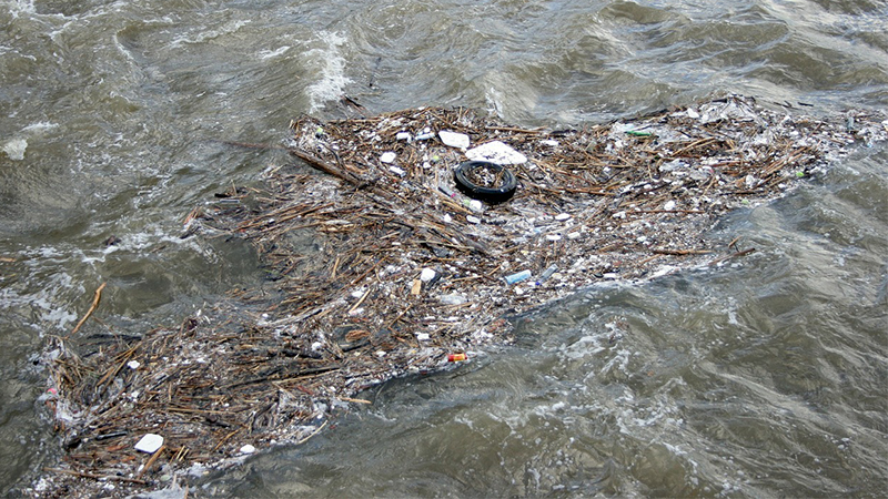 One Fish, Two Fish, Red Fish, Brown Fish – New York's Brownfield Cleanup Program in 2016